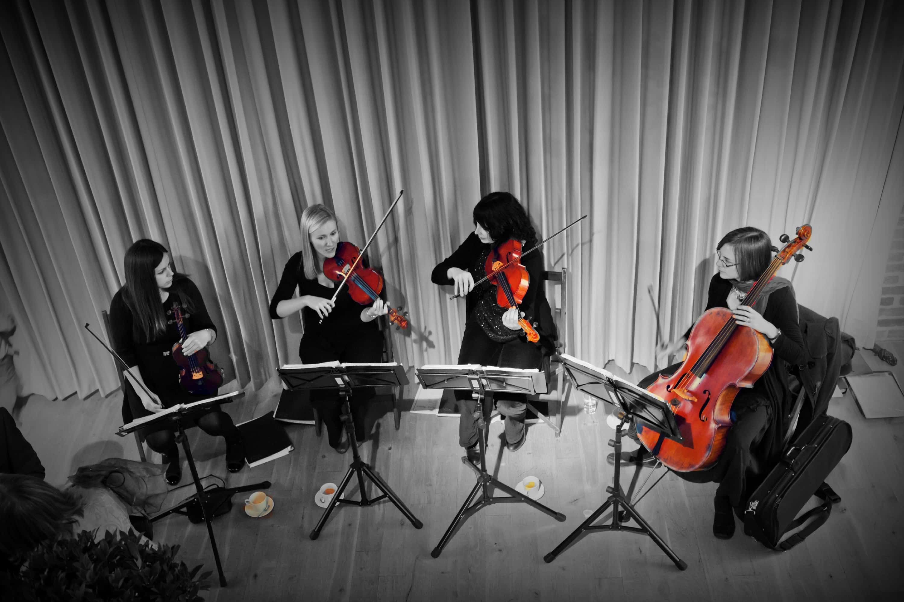 Wedding String Quartet Demo Video